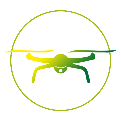 drone home inspections