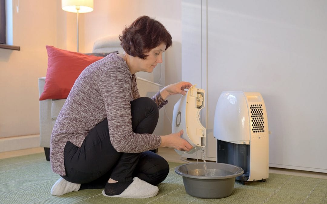 4 Tips for Improving Indoor Air Quality at Home